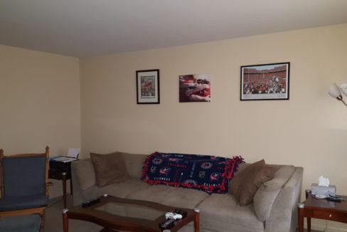 Living Room-102